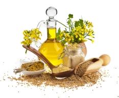 mustard-display