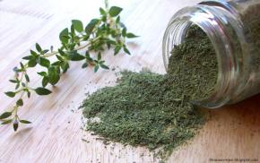 Thyme-The-Trent