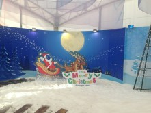 giant snow globe!