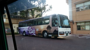 Meet the NEW Iki busses! Decored with Iki views!