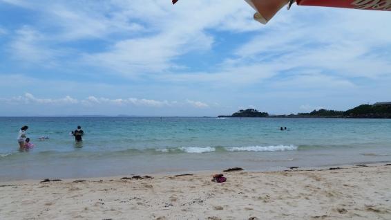 Nishikihama AKA fish beach!