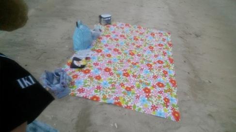 Beach day on dragon Island!