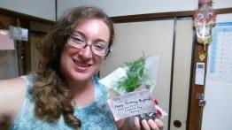 My new pet asparagus bonsai, Harry!