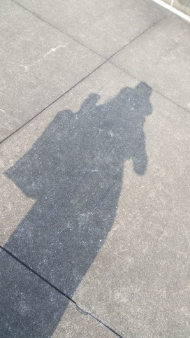 This shadow friend looks so cool!!